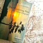 Novel set in Sweden (a full and varied life)