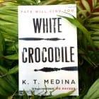 Novel set in Battambang, Cambodia (mine all mine…)