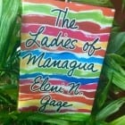 Novel set in Nicaragua (a glimpse of the landscape and the history of Nicaragua)