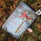 Novel set in USA (An excellent family saga)