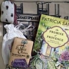 Novel set in the South of France plus excellent video from author, Patricia Sands
