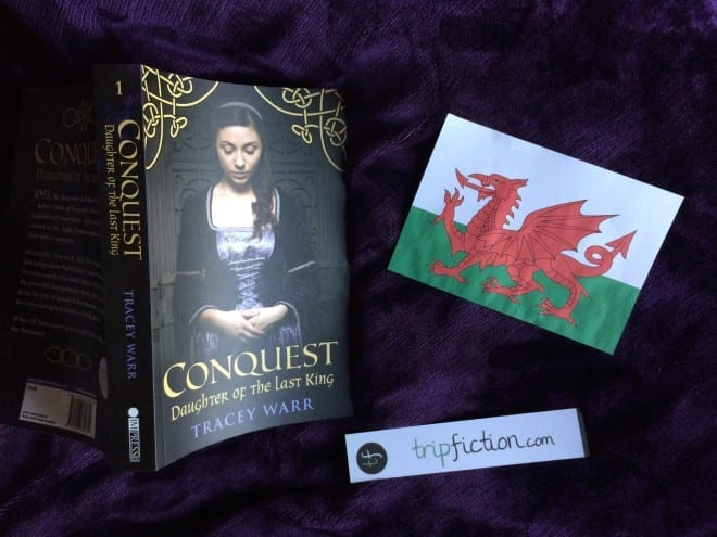 historical novel set in wales
