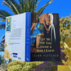 An historical novel that sweeps you through Provence