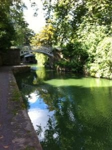Green Canal - pic for Trip Fiction