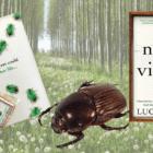 Novel set in London, rural Sussex and France