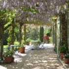 Talking Location With author Jane Dunning – Provence