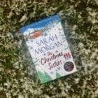 Romance novel set in the Scottish Highlands at Christmas