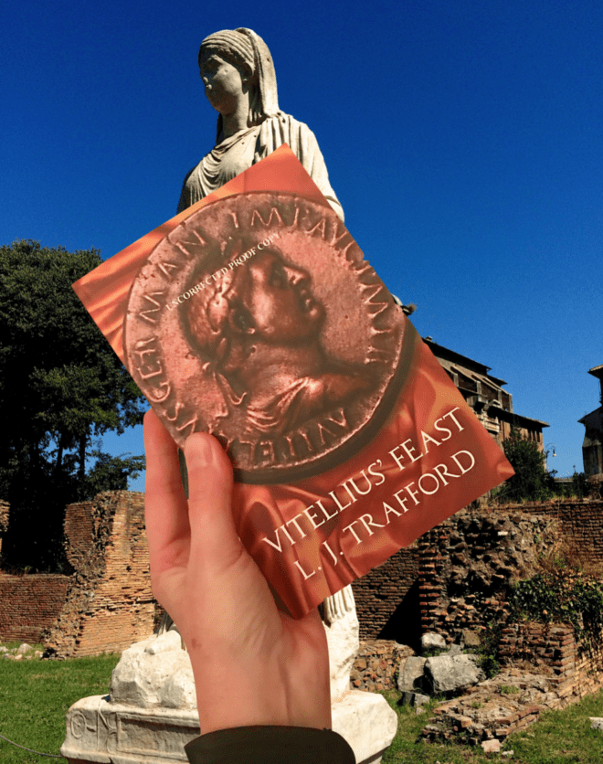 A novel of sex, murder and mayhem set in Rome, 69 AD
