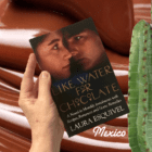 Novel set in Coahuila, Mexico