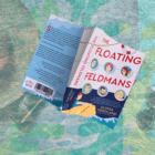 Novel set on a cruise liner in the Caribbean