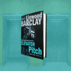 Cracking thriller set in New York City