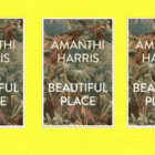 GIVEAWAY! – 3 copies of Beautiful Place by Amanthi Harris – SRI LANKA (UK only)