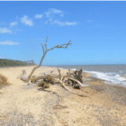 Talking Location With … author Edward Wilson – SUFFOLK and MASSIF CENTRAL