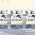 GIVEAWAY! – 3 copies of WINTERING: A SEASON WITH GEESE