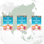 UK GIVEAWAY: 3 copies of The Backpacking Bride by Janice Horton – ASIA