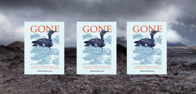 "3 copies of ""Gone"""